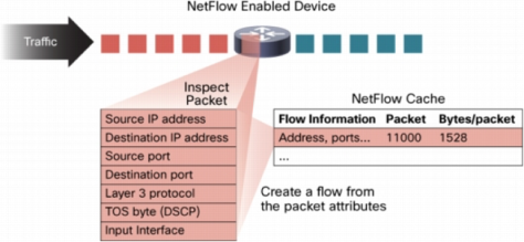 Netflow picture 1